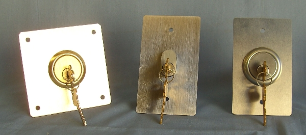 Switches on Stainless Steel Switch Plates